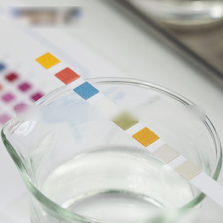 Test Strip for Detecting Water Chemistry
