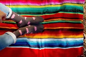 Funny Socks   Skunk Socks: Bees   Novelty, Cool and Cute Socks   Original Socks for Women, Men, Girls & Boys: Clothing