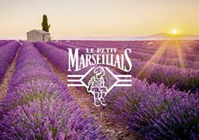 Le Petit Marseillais shower gel with Jasmin 250ml original from France by Le Petit Marseillais : Beauty