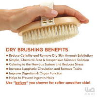 Premium Dry Brush for Cellulite and Lymphatic Massage for Glowing Tighter Skin – Plastic-Free Natural Bristle Body Brush with Long Handle to Easily Exfoliate Dry Skin : Beauty