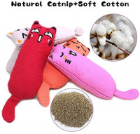 maxin 6 Pcs Catnip Toys for Indoor Cats Interactive Cat Chew Bite Supplies for Cat Kitty Kitten, Catnip Toy Cat Toys Set Teething Chew Toy : Pet Supplies