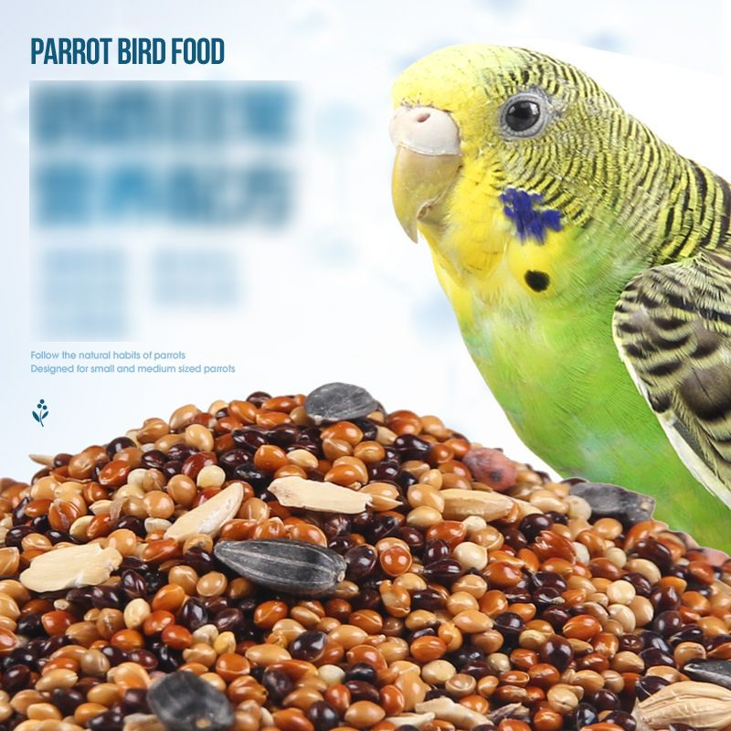 Bird Food Parrot Feed Oil Sunflower