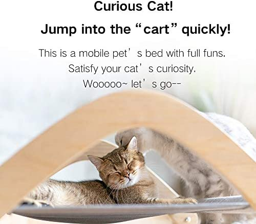 pidan Cat Beds for Indoor Cats Hammock Bed Wooden Cotton Padding Soft Comfy : Pet Supplies