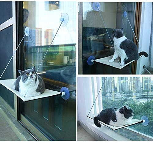 WHICH DOG Cat Window Hammock Seat Cat Window Perch Bed Window Mounted Hommock Suction Hanging Pet Window sill Resting Seat Extra Sturdy Cat Holds Up to 33 Lbs (Wathet) : Pet Supplies