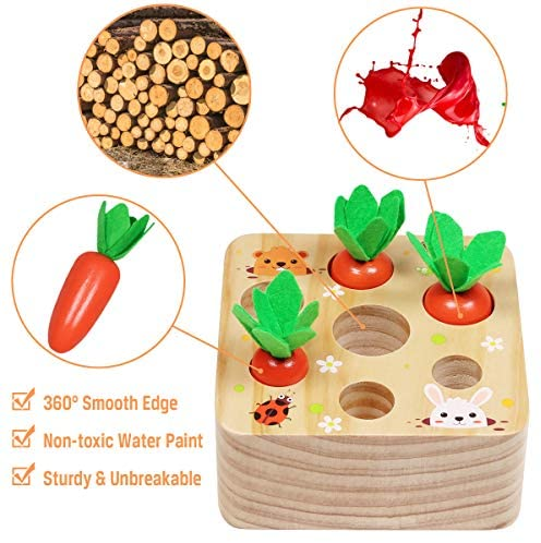 Aitbay Educational Wooden Toys for Toddlers, Carrots Harvest Shape Size Sorting Game, Developmental Montessori Toys for 1 2 3 Year Old Boys and Girls Preschool Learning Fine Motor Skill: Toys & Games