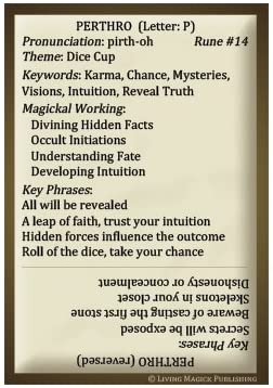 Rune Learning Cards - Living Magick (Self Study Flash Cards) [Cards]: Jadzia DeForest, Jay DeForest: Toys & Games