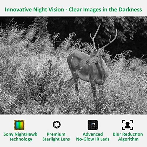 GardePro A3 Trail Camera (2020), 20MP, 1080P H.264 HD Video, Clear 100ft No Glow Infrared Night Vision, 0.1s Trigger Speed, 82ft Motion Detection, Waterproof Cam for Wildlife Deer Game Trail: Camera & Photo