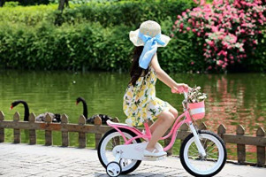 RoyalBaby Girl's Bike Little Swan 16 Inch Kids Bike with Training Wheels Kickstand Basket Girls Child's Bicycle Pink: Sports & Outdoors