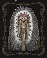 DGA Native Skull Signature Collection Super Soft Plush Blanket, Queen: Home & Kitchen