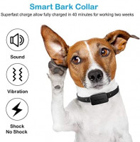 Petoffers B1s Bark Collar with App Control, Waterproof Dog Barking Collar with Intelligent Safe Bark Control, Effective Sound, Vibration and No Harm Shock Rechargeable Dog Training Collar : Pet Supplies