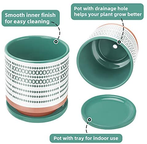Succulent Pots, Small Flower Pots Indoor, 5 Inch Ceramic Planter Plant Pot with Porcelain Tray, Drainage Hole for Snake Plants, Jade Plant, Herbs, Prack of 2 – Plants Not Included, Green: Kitchen & Dining