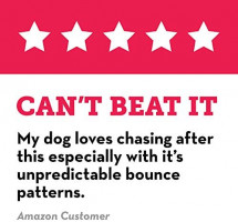 Pet Supplies : Pet Chew Toys : KONG - Jump'N Jack - Durable Rubber Dog Toy for Chewing and Teeth Cleaning - for Large Dogs