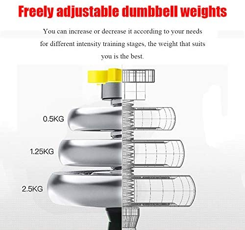 SimpleL Adjustable Dumbbells Set 44 LB / 66 LB / 110 LB Home Weight Lifting Professional Dumbbells for Body Workout Home Gym Fitness with Carry Case (66 LB) : Sports & Outdoors