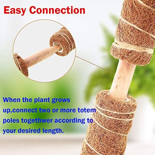 N/G Coir Totem Pole, 4 Pcs 15 Inches Plant Support Totem Pole Indoor Coco Coir Pole Moss Stick Monstera Plant Support Extension : Garden & Outdoor