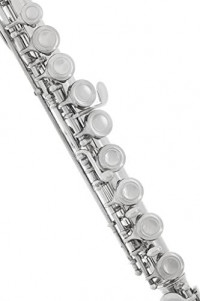 Lazarro Professional Silver Nickel Closed Hole C Flute for Band, Orchestra, with Case, Care Kit and Warranty, 120-NK: Musical Instruments