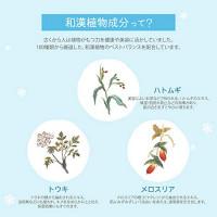 Kose Medicated Sekkisei Cream 40g/1.2oz : Beauty