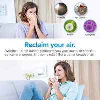 LEVOIT Air Purifier for Home Smokers Allergies and Pets Hair, True HEPA Filter, Black, 2PACK & LV-H132 Air Purifier Replacement Filter LV-H132-RF, 4 Pack, 4 Count: Home & Kitchen
