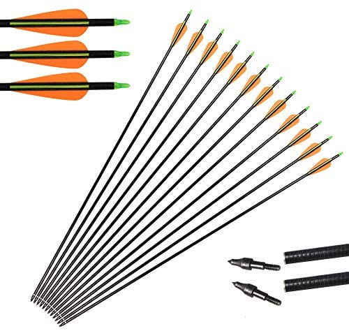 "Huntingdoor 31"" Archery Fiberglass Target Practice Arrows with Screw-in Tips for Recurve or Compound Bow(Pack of 12) (Green): Sports & Outdoors"