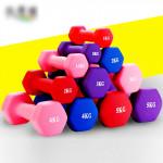 A Generation Of Men And Women Shaping Dumbbells Fitness Matte Color Hex Dumbbell Dip Dumbbell