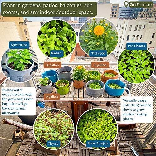 Vegetable Plant Grow Bags 4-Pack with Handles Heavy Duty Premium Planting Pots Container for Herbs, Flowers, and More in Indoors, Gardens, Patios, Balconies (1 Gallon, Blue/Gray/Green/Orange) : Garden & Outdoor