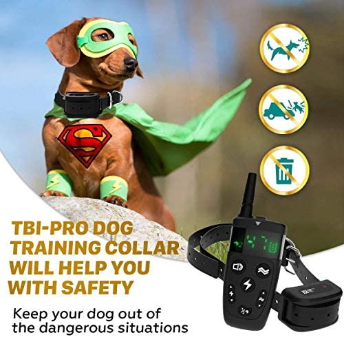 TBI Pro Dog Training Collar with Remote - Shock Collar for Dogs Range 2000 feet, Vibration Control, Rechargeable Bark E-Collar - IPX7 Waterproof for Small, Medium, Large Dogs, All Breeds (Black) : TBI Pro : Pet Supplies
