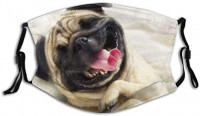 Smile Pug Dust Mouth Mask - Reusable Family Pet Printed Face Cover Headband Adjustable Balaclava Masks for Outdoor