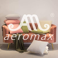 AM AEROMAX Memory Foam Throw Pillow Insert 18 x 18-Inch Insert with Cotton Cover Decorate Pillow Insert Without Deform After Longtime Use for Sofa Bedroom and Living Room: Kitchen & Dining