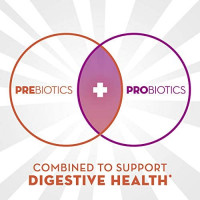 Align DualBiotic Prebiotic + Probiotic Supplement for Adult Men and Women, 60 Count, Digestive Support Gummies in Natural Fruit Flavors: Health & Personal Care
