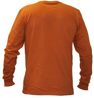 Elite Fan Shop Texas Longhorns Long Sleeve Tshirt Bold Orange : Clothing