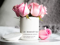 Le Magnetique | White Mahogany | Luxury Scented Vegan Coconut Soy Aromatheraphy Jar Candle with Lid | Hand Poured in The USA | Clean & Slow Burn | 10 oz (Navy Blue, Medium): Home Improvement