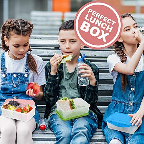 Pink Bento Box – 3 Lunch Boxes – 39oz – Adults Toddlers Kids & Baby Food Containers – BPA Free Plastic- Snap Lock Lids – Divided Removable Compartments –Air Tight & Leak Proof School Lunch Box: Kitchen & Dining