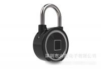 Small password fingerprint padlock Bluetooth mobile phone to open home warehouse fitness security anti-theft dormitory locker door