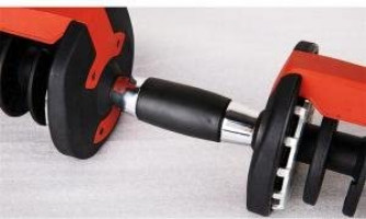 Rainbowtex 2018 Wholesale Gym Equipment Adjustable Dumbbell Body Building Automatically Dumbell red : Sports & Outdoors