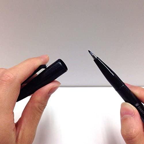 Pentel brush touch felt-tip pen 12 color set SES15C-12 : Office Products