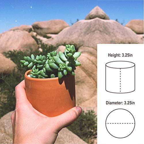 Zayla's Houseplants Cylinder Terracotta Pot - Minimal - Drainage Hole - Windowsill Size (1): Home & Kitchen