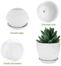 Flower Pots and Transplanter, Brajttt 5.5 Inch Cylinder Ceramic Plant Pots with Connected Saucer, Planters for Succuelnt and Little Snake Plants (4 Pack, White): Garden & Outdoor