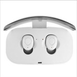 Bluetooth 5.0 Wireless Earbuds with Charging Case