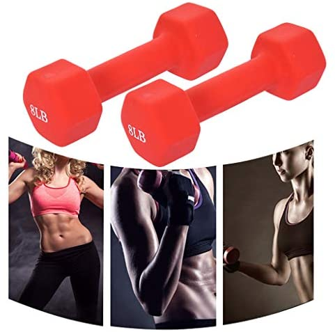 2PCS Ladies Womens Dumbbell Weights in Pair(10lbs-2PCS): Clothing