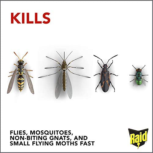 Raid Flying Insect Killer, 15 OZ (Pack - 2): Health & Personal Care