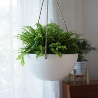 White Hanging Planter Basket - 10 Inch Indoor Outdoor Flower Pots, Plant Containers with Drainage Hole, Plant Pot for Hanging Plants, Pack 2: Garden & Outdoor