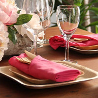 """Auburn Lane Palm Leaf Plates, Disposable, Eco Friendly, and Biodegradable Dinnerware Party Pack of 150 Pieces, Just Like Bamboo Plates 50 (10""""+7"""") Square Plates 100 Wood Forks Knives Spoons: Kitchen & Dining"""