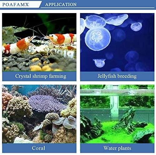 Poafamx 16GAL Aquarium Water Chiller 60L Fish Tank Cooler Heater System 10-40℃ Temperature Setting Constant Quiet 60L for Home Fish Shrimp Breeding Aquaculture 110V with Pump (60L Chiller): Kitchen & Dining