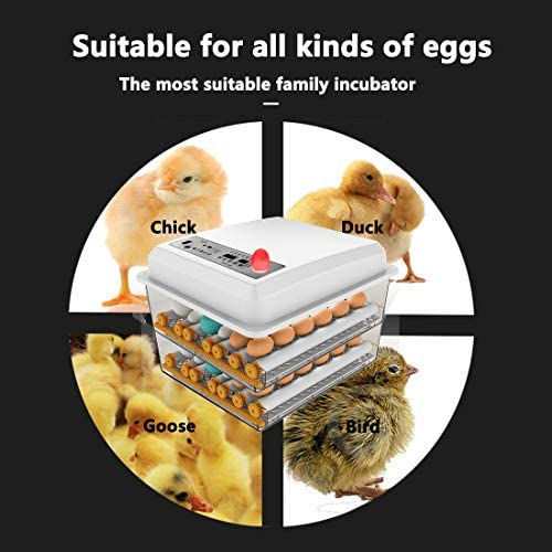 JAEDO Automatic Egg Incubator 96~128 Egg Incubator Digital Automatic Hatcher with Egg Turning for Chickens Ducks Goose Birds : Garden & Outdoor