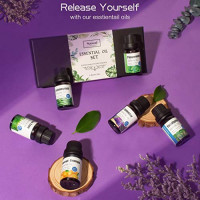 Top 20 Aromatherapy Essential Oil Set, 100% Pure Natural Essential Oils Sets Perfect for Diffuser, Home Fragrance, Include Lavender, Rosemary, Peppermint, Lemongrass, Tea Tree Oils and 15 More, 10 ML : Beauty