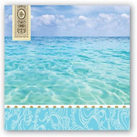 Michel Design Works 20-Count 3-Ply Paper Cocktail Napkins, Tranquility: Kitchen & Dining