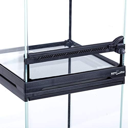 "REPTIZOO Mini Reptile Glass Terrarium Tank 8""x8""x12"", Front Opening Door Full View Visually Appealing Mini Reptile or Amphibians Glass Habitat : Pet Supplies"