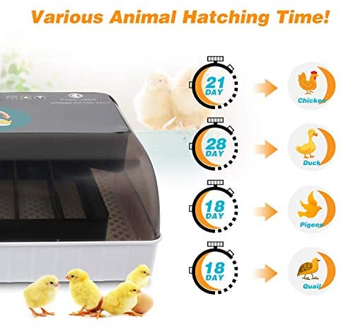 ESTINL Egg Incubator, 9-35 Eggs Fully Automatic Poultry Hatcher Machine with Led Candler and Auto Turning, Small Digital Incubators Breeder for Hatching Chicken Duck Goose Quail Birds Turkey: Garden & Outdoor