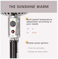 Patiomore Outdoor Propane Heater Patio Tall Standing Heater, 40000 BTU, Matte Bronze : Garden & Outdoor