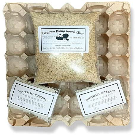 Cricket & Dubia Roach Colony Starter Kit - Includes 6 Egg Flats, Premium Dubia Roach Chow Cricket Food (1 lb), 1-(2 oz packet) Water Gel Granules (2 oz Total)   Raise Dubia Roaches Crickets : Pet Supplies