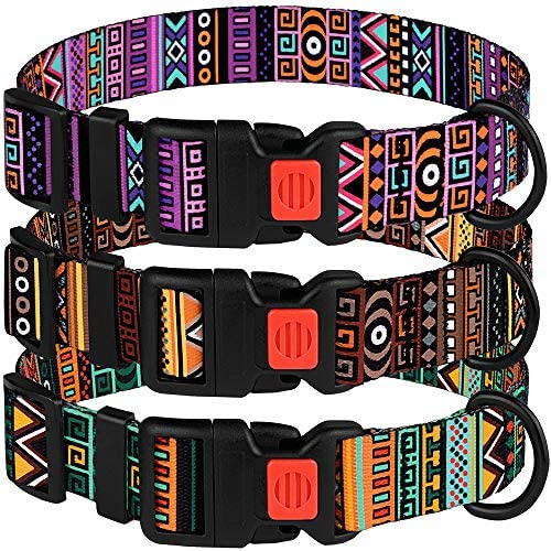 "CollarDirect Tribal Dog Collar Aztec Pattern Adjustable Nylon Pet Collars for Small Medium Large Dogs Puppy (Pattern 2, Neck Fit 10""-13"") : Pet Supplies"